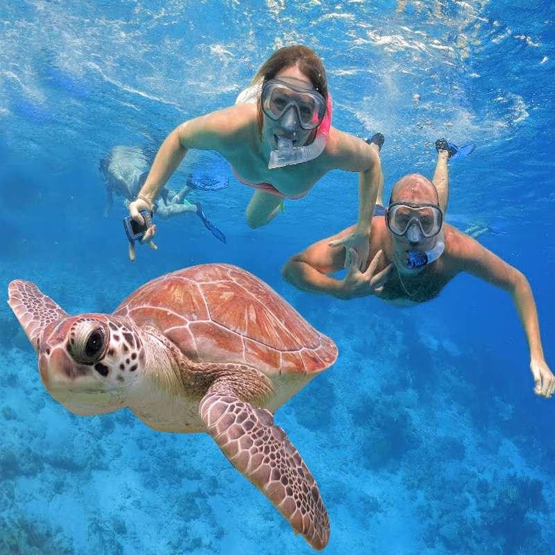 snorkeling-charters-palm-beach